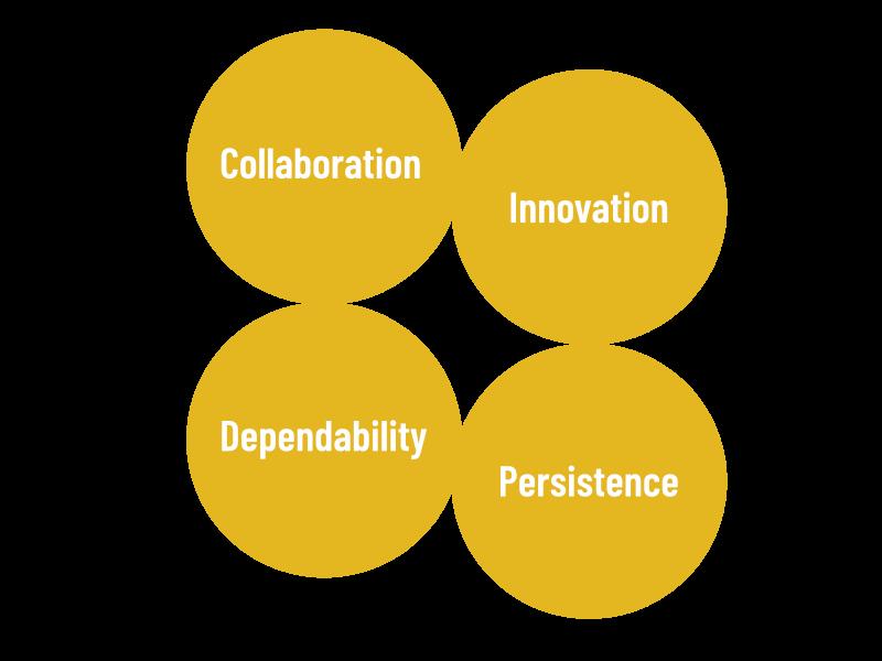 Sennasi global consultants values